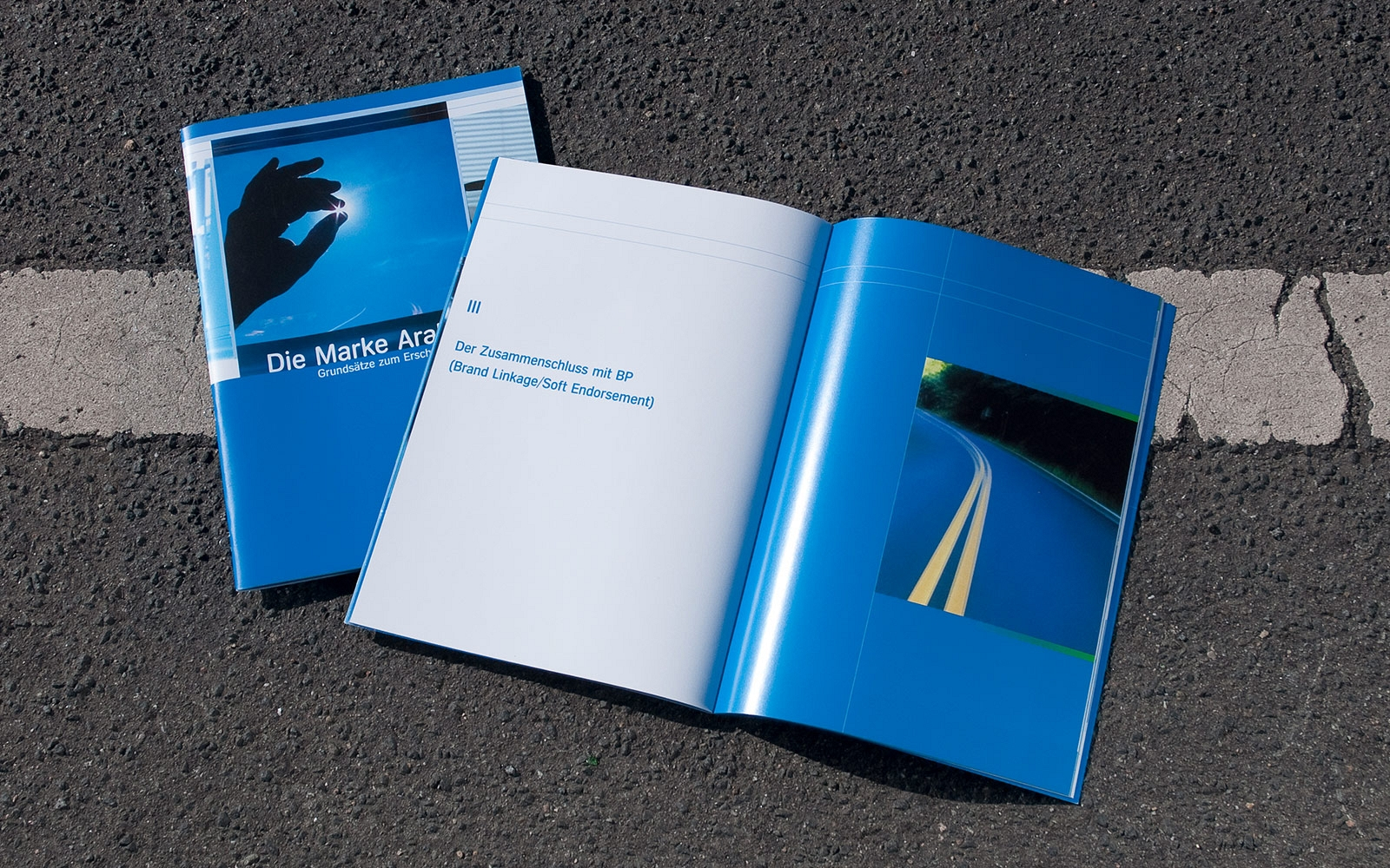 Corporate Design Manual